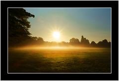 Sunrise in the Park (SFB579 Namaste) Tags: park uk morning blue england sky orange sun white mist grass silhouette fog early am warm glow bright sony yorkshire wakefield sunburst local recreation starburst outwood