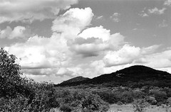 mpix 50 050316 EOS ELAN 7n 50mm Kodak BW400CN 050916 012e ~ Latigo Ranch (BDC Photography) Tags: usa clouds canon blackwhite texas 35mmfilm canoneoselan7n pipecreek canonef50mmf14usmlens canonslrfilmcamera cloudsstormssunsetssunrises bwfp epsonperfectionv600photoscanner bwfpro58mm010uvhaze1xmrcfilter bwfpro58mm0222xmrcyellowfilter kodakprifessionalbw400cnfilm