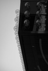 bulbs (FotoNordin) Tags: light blackandwhite monochrome bulbs