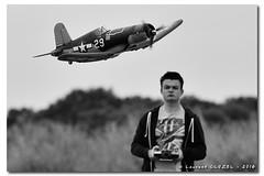 Arthur flying the Corsair (Laurent CLUZEL) Tags: bw electric nikon horizon airplanes hobby nb corsair 28 mustang warbirds rc 70200 foamy p51d epo d610 vrii f4u1