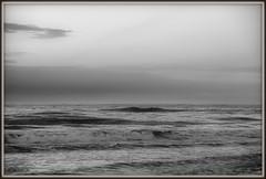 _JVA4652 (mrjean.eu) Tags: gris noir belgique noiretblanc knokke vagues nuance ambiance nuances borddemer heurebleue lumièredusoir