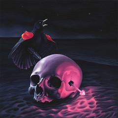 Thanks For Socializing Album Cover Art (LOaF NINjA) Tags: bird art beach painting skull acrylic glow contemporary fine surreal nicholas boyd redwingblackbird nicholasboyd loafninja