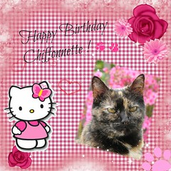 Chiffonnette a 13 ans ! (Lau (Fripy)) Tags: birthday hellokitty card anniversaire carte chiffonnette