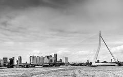 DSC_8362 (Patrick Herzberg) Tags: blackandwhite holland water skyline rotterdam nikon zwartwit nederland brug architectuur erasmusbrug landschap 2016 dezwaan d5200