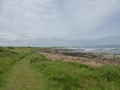 Northwards (Brian Cairns) Tags: saintandrews cambo fifecoastalpath kingsbarns brianbcairns therockandspindle buddoroack