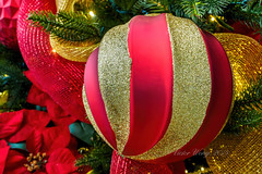 Classic red-gold Christmas bauble (Victor Wong (sfe-co2)) Tags: christmas xmas winter red orange holiday color macro green yellow closeup ball festive season gold design warm december symbol traditional seasonal decoration ornament merry elegant ornate decor bauble isolated