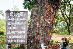 PPB_7210 (PeSoPhoto) Tags: tree rouge nikon asia cambodia khmer killing pot xp fields ek dictator phnom massgraves penh pol dictatorship khmerrouge polpot 2016 massgrave atrocity choengek choeng d7100