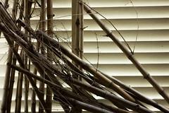 IMG_0166_1 (pavel.milkin) Tags: city light art dark bamboo helios 442 helios442 helioslens