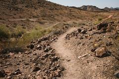 5R6K2860 (ATeshima) Tags: arizona nature havasu