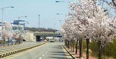C16-Seoul-Art-Architecture-Heyri Village (9) (jbeaulieu) Tags: art village seoul coree heyri
