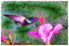 Ruby-throated Hummingbird (Leo Bar) Tags: painting texture birds beauty colors compositing creative digitalart artwork art pixinmotion leobar garden flowers nature newengland massachusetts animalplanet awardtree artdigital netartii
