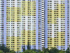 DSC01416_C (wut88) Tags: publichousing estate