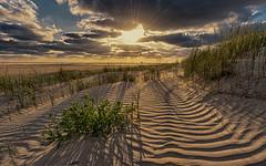 In the dunes (Stefan Sellmer) Tags: sunset beach water clouds germany de deutschland sand colorful outdoor dunes northsea sunbeams schleswigholstein stpeterording sanktpeterording
