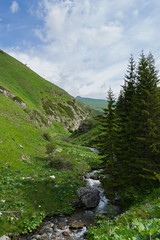 Getting lost (Eyes as lenses) Tags: mountain nature forest landscape nationalpark woods hiking adventure macedonia bistra mavrovo