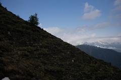 im Aufstieg zum Glishorn (VS) (Toni_V) Tags: leica alps schweiz switzerland europe suisse hiking rangefinder mp alpen svizzera wallis brig valais wanderung randonne 2016 svizra oberwallis escursione summiluxm leicam glishorn 35mmf14asph digitalrangefinder 35lux messsucher gibidum 160625 35mmf14asphfle type240 typ240 toniv m2400415
