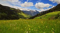 Swiss summer... (Alex Switzerland) Tags: canon landscape eos switzerland alpen paysage landschaft paesaggio 6d graubnden grigioni fuorns