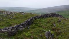 Soft Rain (Michael Foley Photography) Tags: ireland burren coclare galwaybay