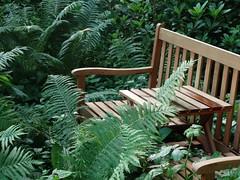 Jeder lauschige Platz ldt zum Meditieren ein. (Mahashakti Uta Engeln) Tags: meditation stille yopap