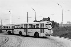 066 17 (brossel 8260) Tags: bus belgique liege stil