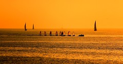 sailing in a golden sea - Tel-Aviv beach (Lior. L) Tags: sea beach golden telaviv sailing sailinginagoldenseatelavivbeach