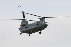 IMG_9228 (Airpower Art) Tags: greek us team scorpion zeus ii german pakistani marines lightning phantom chinook hercules typhoon raf turk f35 transall rafale gripen textron orlik c13o f1r