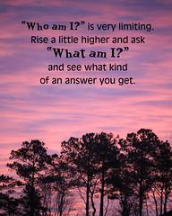 What Am I? (Lynda Apel) Tags: am mindfulness spirituality inspirational whoami whatami positivethought askyourself