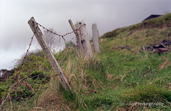 Broken Fence (Tim Dobbs) Tags: 50mm epson nikonf80 v500 kodakektar