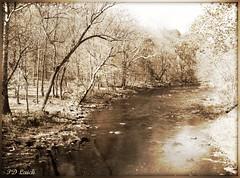 Tohickon Creek (MissyPenny) Tags: trees usa water sepia creek landscape pennsylvania buckscounty pointpleasant tohickoncreek pdlaich missypenny