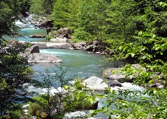 The River Ah-Di-Na McCloud, California USA (lupuscanis840) Tags: footprints highcountry ahdina lupuscanis mccloudrive