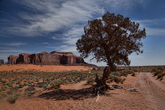 Monument Valley (P M Littman) Tags: monumentvalley