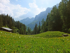 Alpine meadow (LeelooDallas) Tags: landscape switzerland europe day fuji cloudy meadow dana alpine finepix leukerbad hs20 exr iwachow