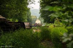 Lost train house (Merlijn Scharn) Tags: old house green train lost forgotten trainhouse