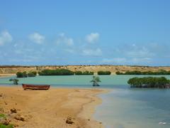 P1040053 (jdfowl) Tags: green colombia redsand lagoon mangrove punta gallinas laguajira puntagallinas