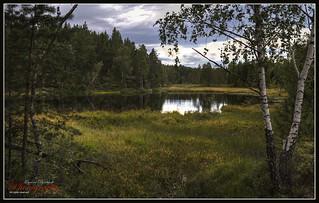 Norwegian nature in september