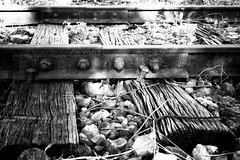 Wood and Steel (Yoshi (very slow)) Tags: railroad travel blackandwhite bw monochrome station japan zeiss train canon blackwhite availablelight railway jr explore fukuoka ze kyushu       explored localline  makroplanart250