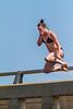 AuTrainPark-20130706-071 (Frank Kloskowski) Tags: bridge summer people water jump michigan dive upperpeninsula lakesuperior autrainriver autrain