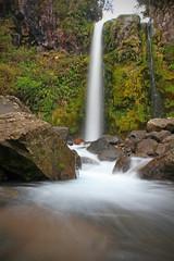 Dawson Falls (Paul J's) Tags: park mountain water forest river volcano waterfall bush long exposure falls national dawson taranaki egmont mttaranaki 131005