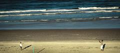 """Taught NOT Bought"" (Jimtography@yahoo.com) Tags: ocean boy man beach water proud football sand focus moments florida priceless sony father memories son catch manual daytona 135mm nex osawa 5r vision:beach=0682"