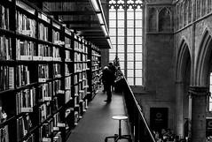 L1029134 (Frederik Brunkwall) Tags: leica church maastricht library bibliothek kirche m8 nokton lightroom vsco