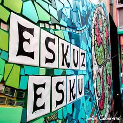 DSC_0016 (Javier Colmenero) Tags: españa vitoriagasteiz paísvasco blinkagain muralesvitoria