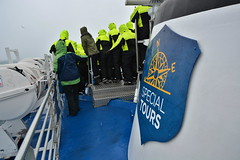 Whale Watching in Iceland (Justin LaBerge) Tags: ocean sea vacation seagulls tourism ice boat iceland europe tour euro tourist whale icelandic