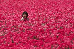 Kiekeboe! (zsnajorrah) Tags: flowers people nature netherlands candid explore vogelenzang ef70200mmf4lis eos600d