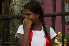 (Lucille Kanzawa) Tags: portrait student retrato srilanka uniforme estudante estudanteemuniforme studentinuniform