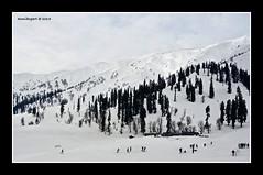 Gulmarg ski resort (Azmi Bogart) Tags: india white snow ski resort kashmir gulmarg