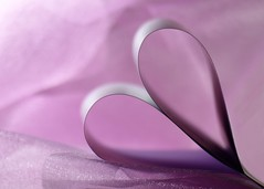 Paper Heart (nikagnew) Tags: pink light shadow love lines paper heart curves valentine romance mauve romantic minimalism lavendar valentinesdayiscoming paperminimalist