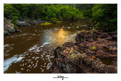 Icing (Shane McCallum) Tags: trees ice water sunshine creek forest sunrise river coast waterfall rocks stream glow falls foam yandina wappa cloudsstormssunsetssunrises