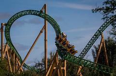 IMG_2227 (delon_anno) Tags: animals gardens canon tampa rebel run roller cheetah coaster busch t5i