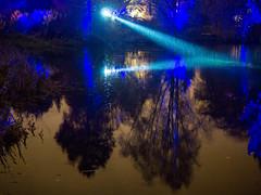 20141121-0019 (www.cjo.info) Tags: light plant reflection tree water rain weather night garden scotland pond flora edinburgh unitedkingdom royalbotanicgardenedinburgh inverlieth geocity geo:lon=32093 camera:make=olympusimagingcorp geostate geocountrys exif:make=olympusimagingcorp exif:focallength=25mm exif:aperture=ƒ14 exif:lens=leicadgsummilux25f14 exif:isospeed=1600 camera:model=em10 exif:model=em10 botaniclightsnightinthegarden geo:lat=55965602777778