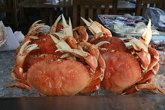 IMG_19187 (mudsharkalex) Tags: california food monterey crab crabs canneryrow fishhopper montereyca thefishhopper