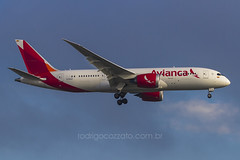 N780AV (rcspotting) Tags: colombia boeing gru avianca dreamliner 7878 avgeek sbgr rcspotting n780av